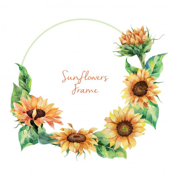 Hand Drawn Watercolor Sunflowers Wreath In 2020 Watercolor