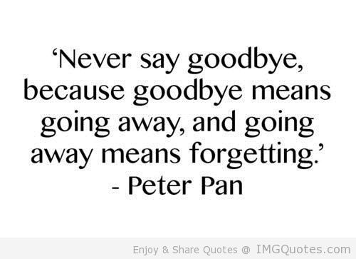 Saying Goodbye To Mom Quotes: 25+ Best Ideas About Never Say Goodbye On Pinterest