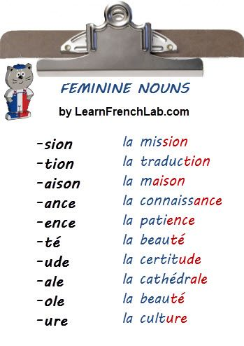 Learn how to identify the gender of French Nouns.