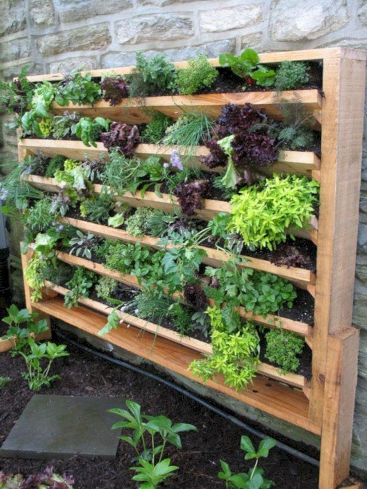 Best 20 Herb Garden Design 2017: 25+ Best Indoor Vertical Gardens Ideas On Pinterest
