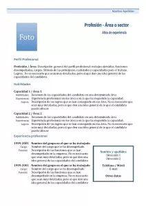Plantillas de Currículum Vitae Combinado: Modelo 1