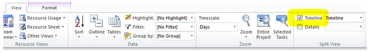 tick the show timeline check box to view the timeline in Microsoft project 2010