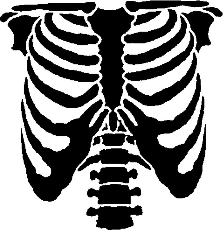 skeleton rib cage stencil - Google Search  Super mit Bleiche auf dunklen Tshirts!