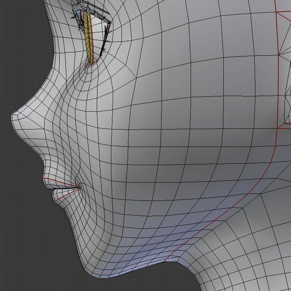 3d anime head face topology side view