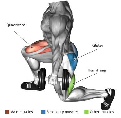 QUADRICEPS - DUMBBELL LUNGES