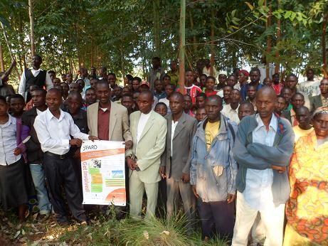 Quand la jeunesse rurale commence à s'intéresser aux activités de recherche agricole pour le développement (ARD)