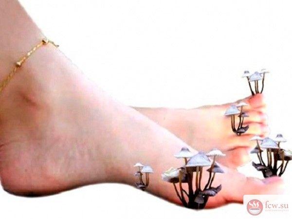 Как избавиться от грибка стоп и ногтей https://www.fcw.su/blogs/zdorove/kak-izbavitsja-ot-gribka-stop-i-nogtei.html  Микоз - довольно распространенное заболевание кожи, доставляющее массу неприятных ощущений. Пузырьки и сыпь на колже, как правило сопровождаются зудом. Ногти начинают активно слоиться и приобретают желтовато-серый цвет. Заразиться микозом (грибком, как обычно называют эту болезнь) может любой человек, не соблюдающий правил личной гигиены. Как правило, болезнь развивается в…
