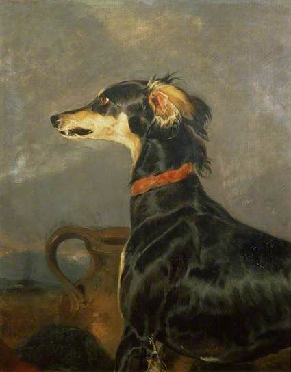 A Saluki Dog by Edwin Henry Landseer Date painted: 1840–1844 Oil on canvas, 73.7 x 57.8 cm Collection: Towneley Hall Art Gallery & Museum