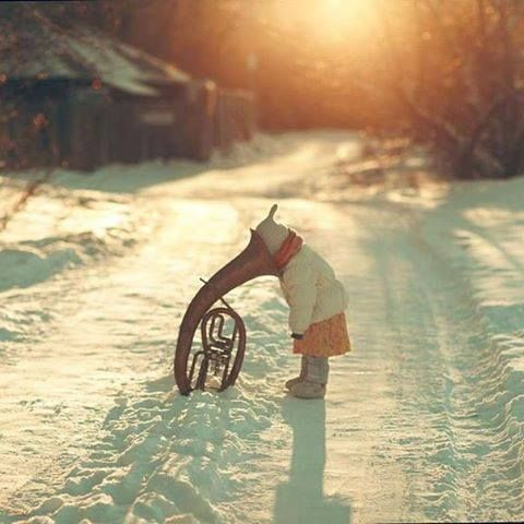 Winter %)