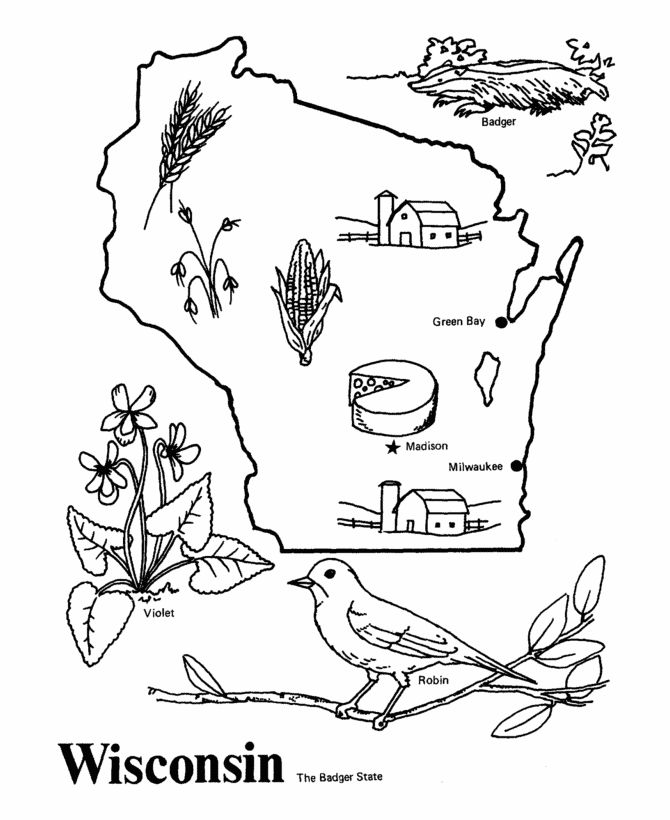 USA-Printables: State outline shape and demographic map - State of Wisconsin Coloring Pages