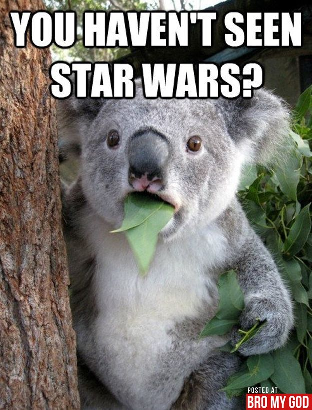 My face when someone has never seen Star Wars
