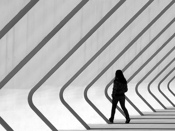 The Importance of Lines in Photography – An Overview with Superb Examples