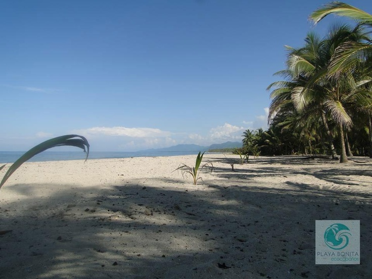 Respira profundo, descansa… estás en Playa Bonita