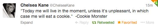 I <3 the Cookie Monster!
