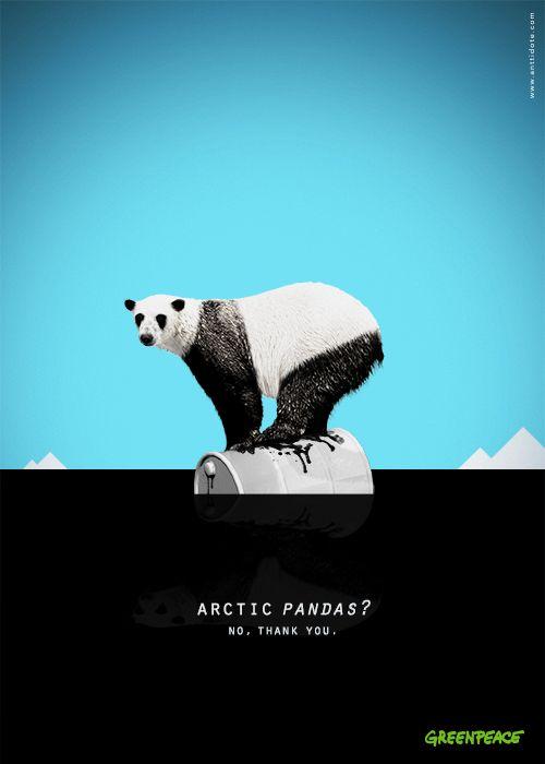 Arctic Pandas?