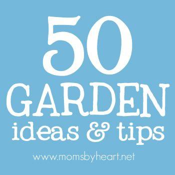 = 50 garden ideas & tips