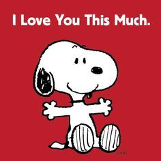 Snoopy : I Love You This Much