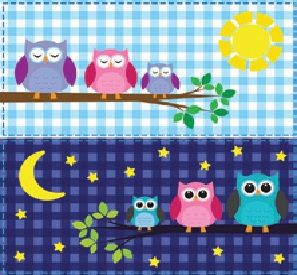 Ivaleegifts - Canvas print owls night and day great for childs room 30cm x 30cm, $19.95 (http://www.ivaleegifts.com.au/canvas-print-owls-night-and-day-great-for-childs-room-30cm-x-30cm/)