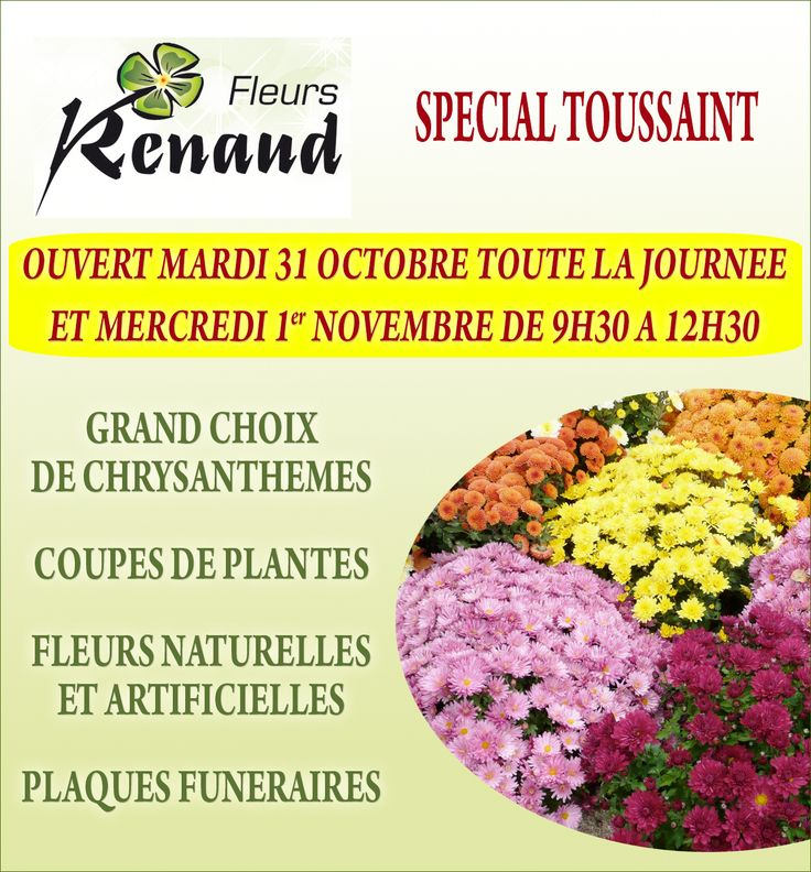 FLEURS RENAUD : SPECIAL TOUSSAINT !