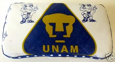 Baby wipes case Mexican soccer team Pumas de la UNAM