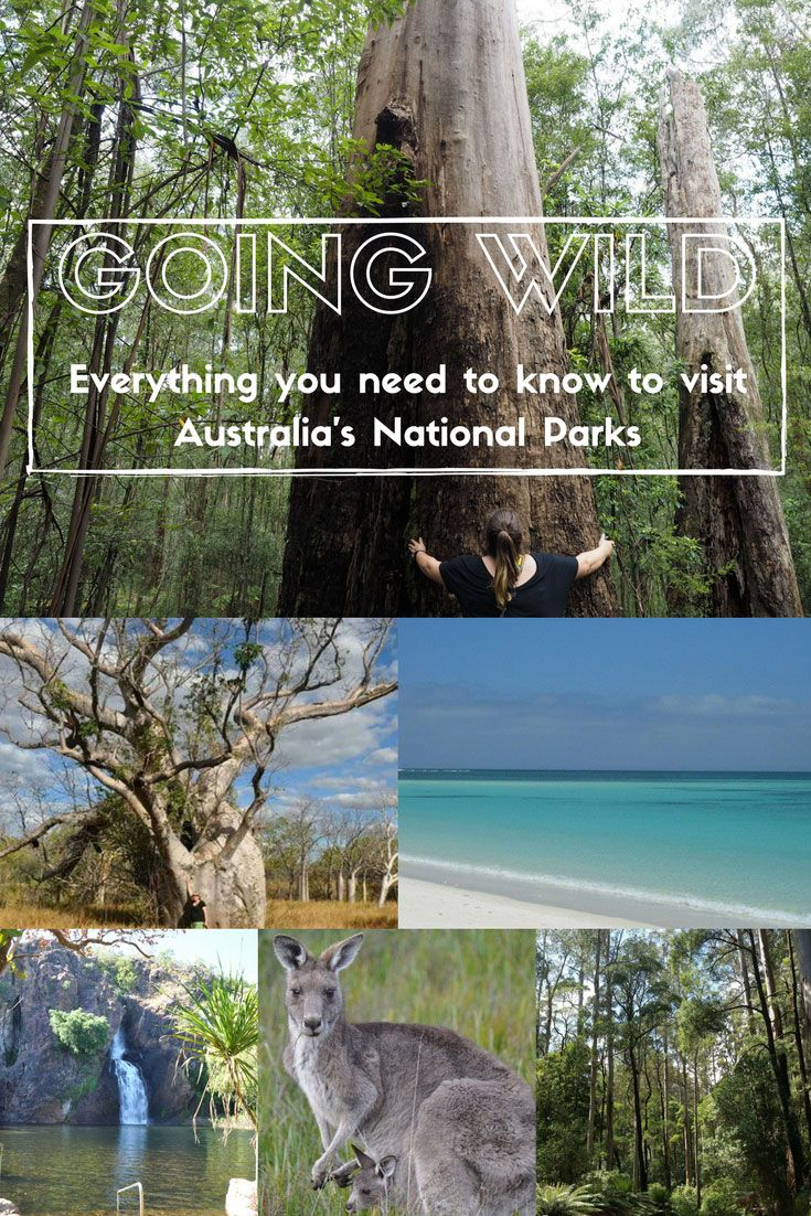 Visiting Australia's National Parks: How & When | See Something New