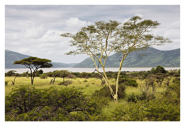 St. Lucia Wetland Park - South Africa