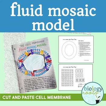 Cell Membrane Fluid Mosaic Model- Phospholipid bilayer: Cell Membrane Fluid Mosaic Model is a two page document consisting of cut outs and student directions to make a fluid mosaic model. This can be used for INB or as a freestanding project. The student directions are editable, so you can modify for your classroom.