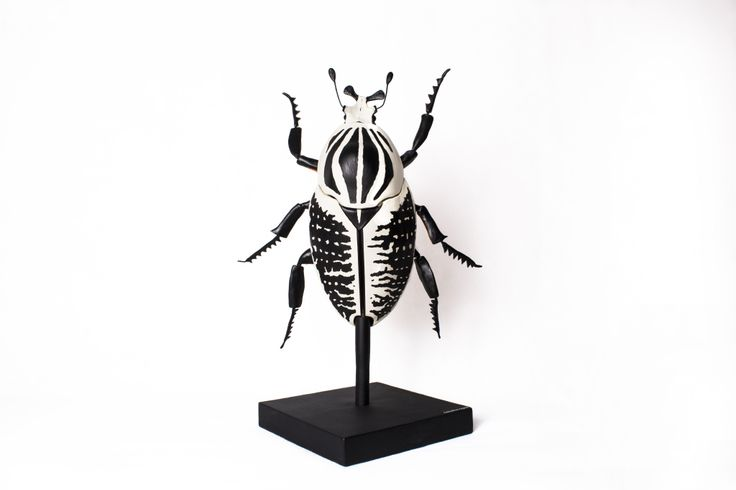 Goliath is a sustainable sculpture of a male beetle inspired by an African specie called Goliathus regius. This African specie is, indeed, one of the largest beetles on Earth. The lenght of a male ...