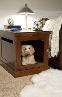 decorology: A great coupon code for pet owners and readers of Decorology