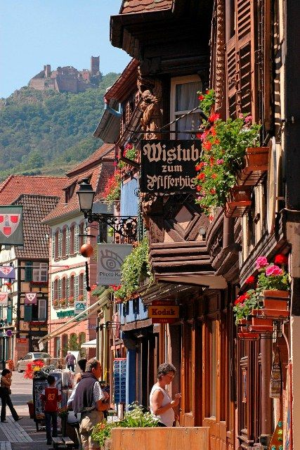 Visit Ribeauvillé and Hunawihr with the mini tourist train - Ribeauville - Dpt 68 Haut-Rhin - Alsace