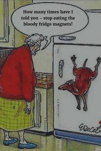 fridgemagnet
