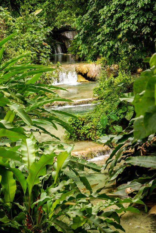 Jungle River - Vila, Vanuatu