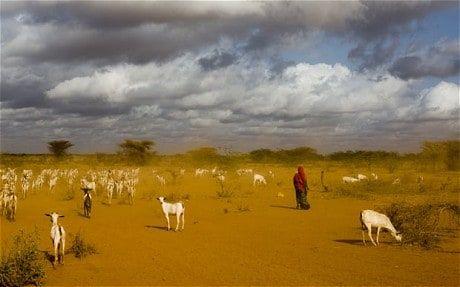 Inside Dadaab, the world's largest refugee camp