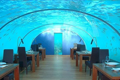 The Ithaa Submarine's restaurant in the Maldives   Taste the local gastronomy of the Maldive Islands while observing the fascinating sea bed of the archipelago. Live this incredible experience in a real piece of heaven a few meters away under the water.  Le restaurant sous-marin Ithaa Undersea aux Maldives  Goûtez à la gastronomie locale raffinée des Maldives tout en observant le spectacle fascinant des fonds marins de l'archipel. Vivez cette expérience incroyable dans un véritable coin de…