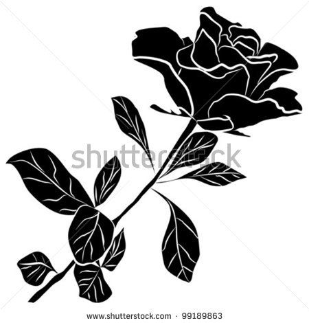 black rose silhouette - freehand on a white background, vector illustration - stock vector