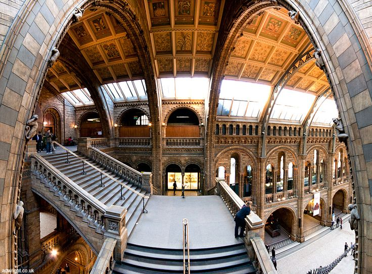 Natural history museum in London photo by Adam Wright