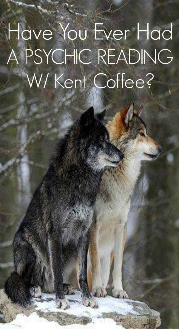 Kent Coffee provides one on one phone readings for those who would like to know their past, present, and future in LOVE.  Know his thoughts and feelings.  Kent Coffee is a well known psychic advisor who trusts his advice on a daily basis.  Call now to get a REAL PSYCHIC READING!