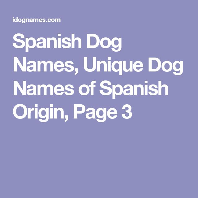 Spanish Dog Names Unique Of Origin Page 3
