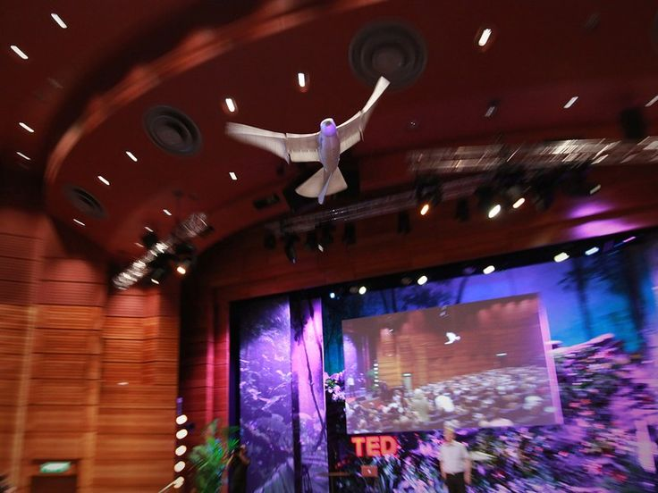 Plenty of robots can fly — but none can fly like a real bird. That is, until Markus Fischer and his team at Festo built SmartBird, a large, lightweight robot, modeled on a seagull, that flies by flapping its wings. A soaring demo fresh from TEDGlobal 2011.