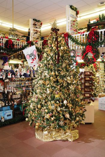 Images of Christmas Tree Shop Near Me - Home Design Ideas