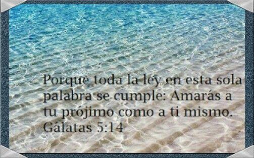 Galatas 5:14 #DiosTeAmaayPeleaporsusHIJOS...