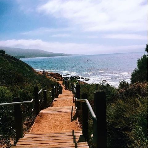 Love to hike? Explore the beautiful Terranea Hiking Trail in #RanchoPalosVerdes. Tag your photos #discoverLA for a chance to be featured. Photo: @ashleelai.la