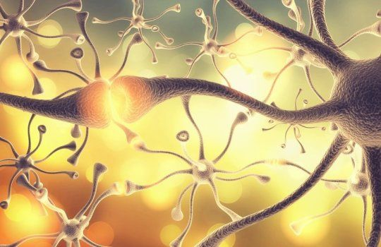 Daily Science and Technology Discovery Updates: Insomnia medication may wake up some patients from...