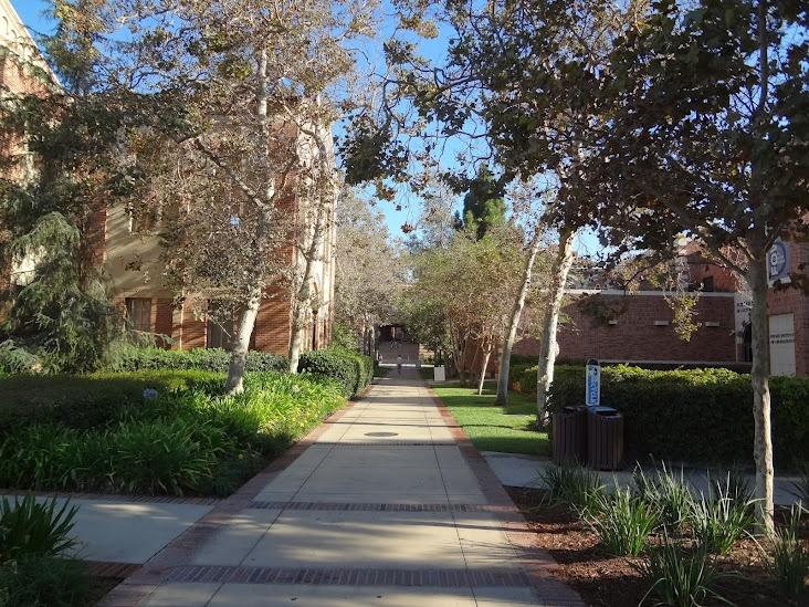 UCLA campus: College Campuses, Ucla Campus, Photo, Dreams Colleges