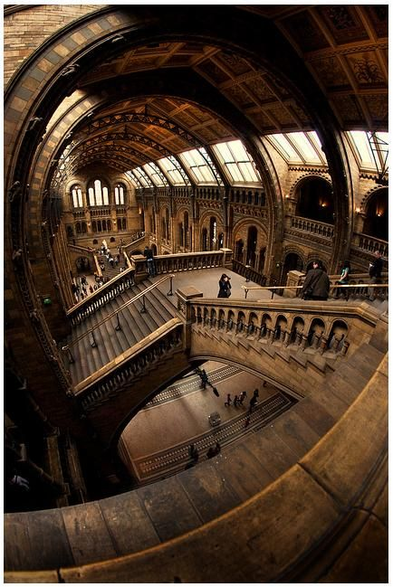 London's Natural History Museum - was so so so crowded with school children upon my visit..we didnt get to see everything :(  beautiful building though!