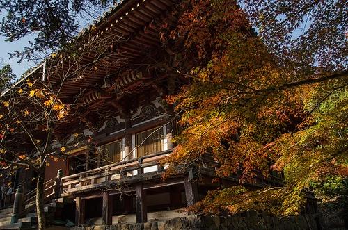 Jingo-Ji, Kyoto / 神護寺(京都)