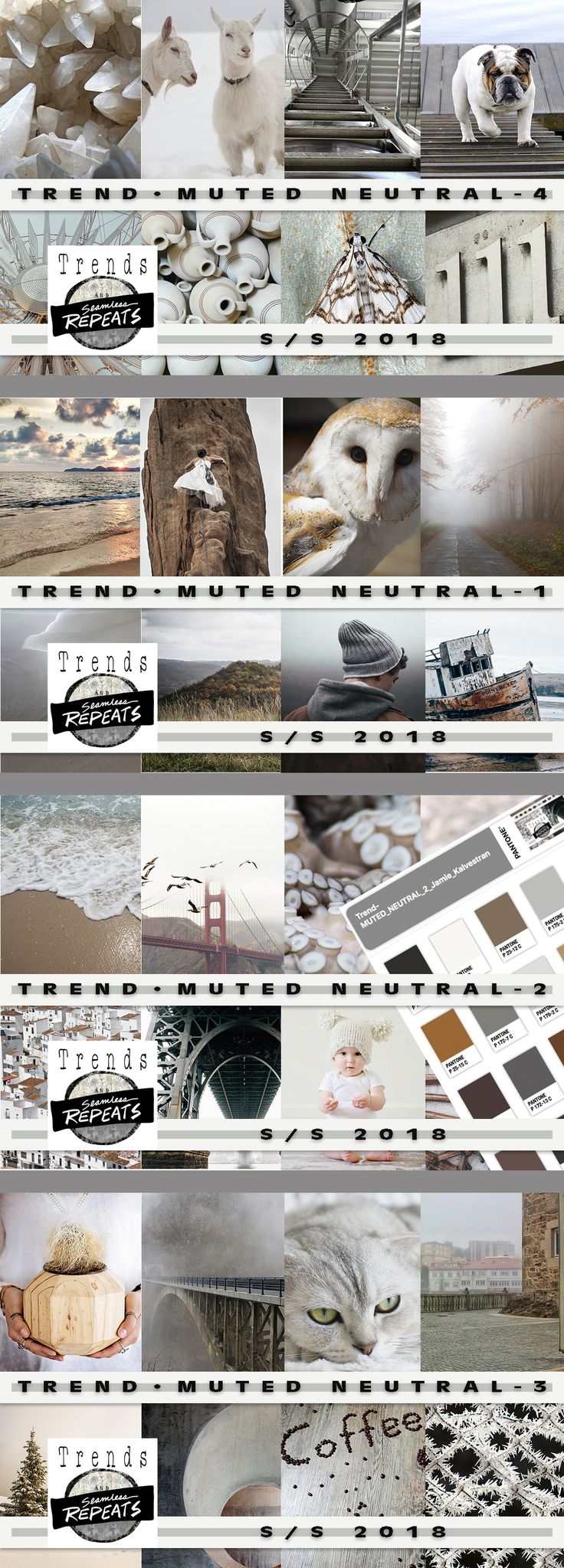TREND - Muted Neutrals Everything you need to create your own trend board, mood board or other presentation or product.      78 - Creative Commons CC0 Images - average size approximately 1200px x 1900px     4 - Pantone Color Palettes (CMYK - Coated)     4 - CMYK (Pantone Color Bridge) .aco files for each color palette