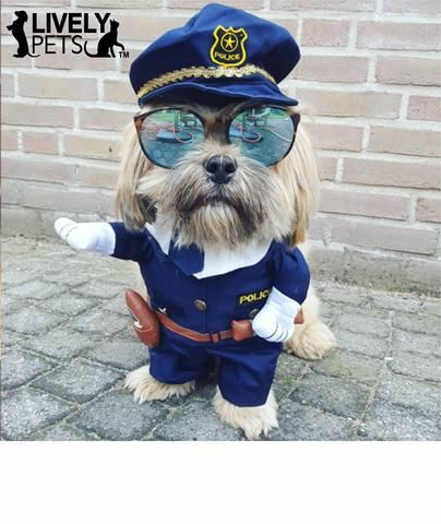 Super Cute Cop Police Officer costume for Dogs and Cats! Now Available in the www.LivelyPetsOnline.com Halloween Superstore! Everything you need to get your pet ready for Halloween!