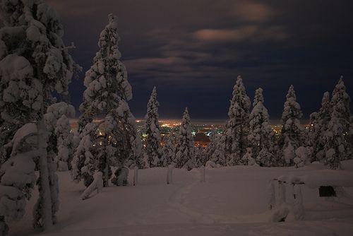 Evening at Ounasvaara - Rovaniemi, Lapland