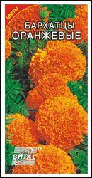 Семена цветов Бархатцы Оранжевые